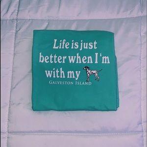 comfort colors mint green t-shirt